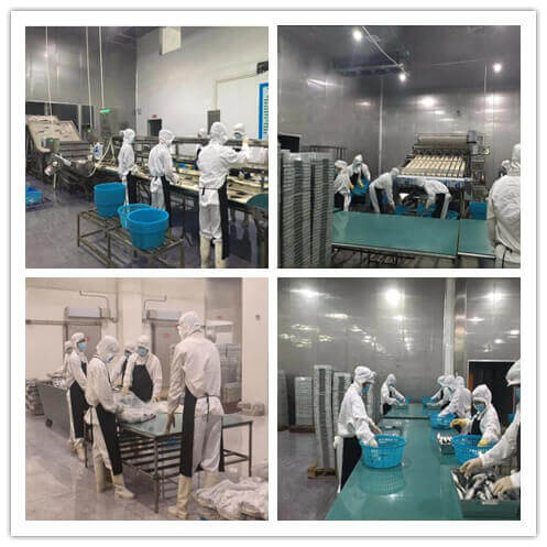 """""""Goldstar Seafoods Production Room"""""""
